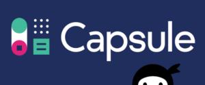 Capsule ninja forms crm extensions